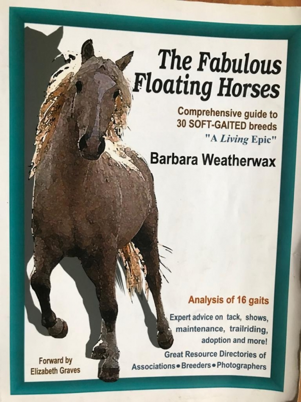 The Fabulous Floating Horses - Barbara Weatherwax