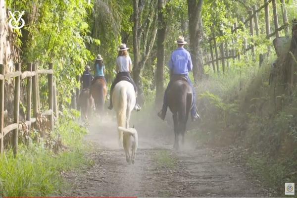 1º Vídeo da série TRIO DE CAVALGADAS com destino à Fazenda Atalaia