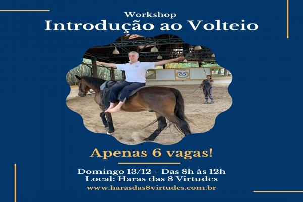 1º Workshop de Volteio do Haras das 8 Virtudes